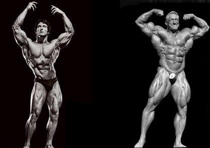 a70aab93f42 Bodybuilding vs. Aesthetics