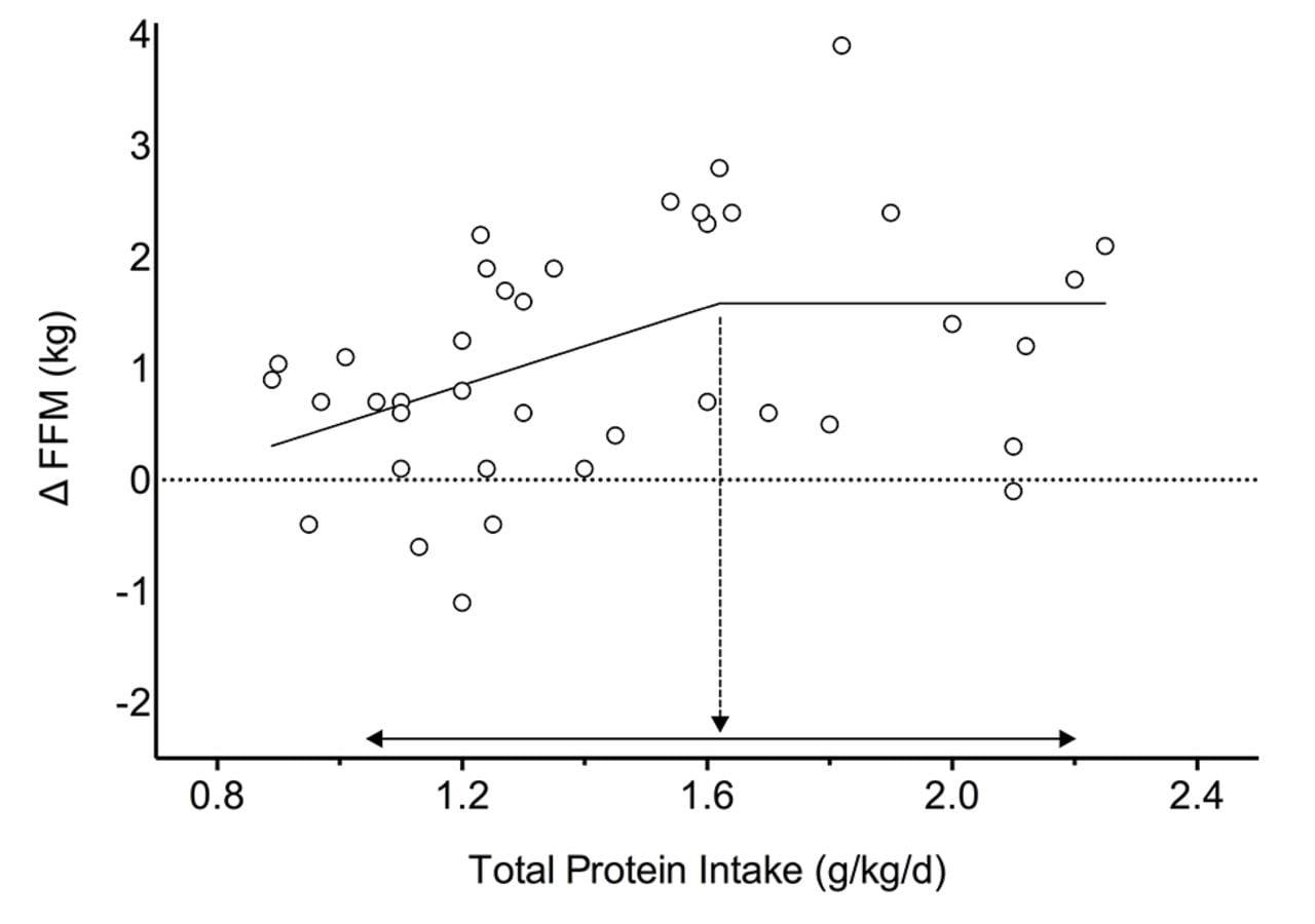 2 gram protein per kilo