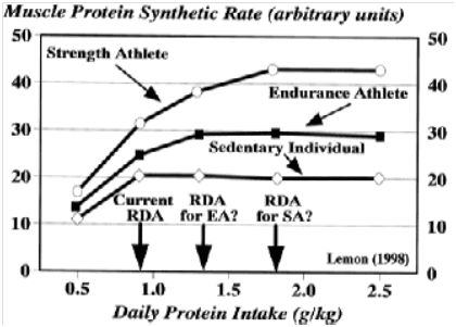 Optimal protein intake