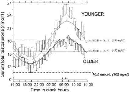Testosterone circadian rhythm