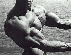 Schwarzenegger Chest Biceps Pose