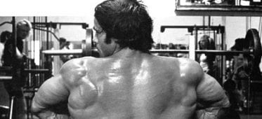 3 Reasons rows are an inferior exercise for your lats
