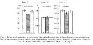 Fat intake testosterone