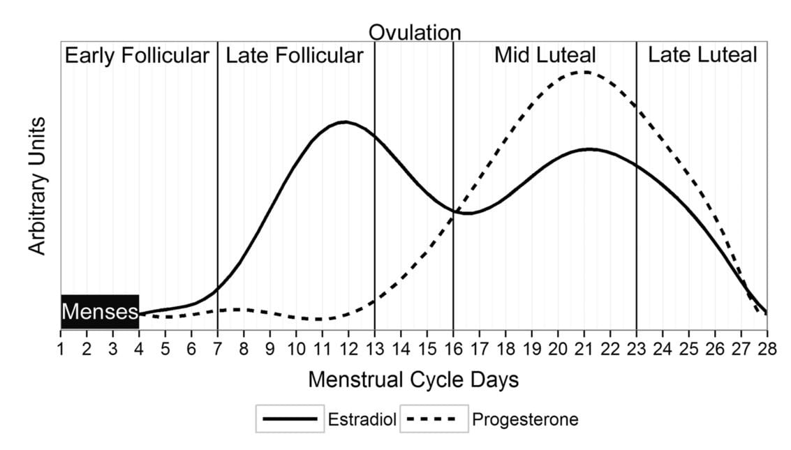 Menstrual cycle periodization