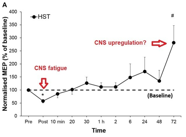 Time-course of CNS fatigue