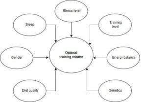 Training-volume-vs-recovery-capacity